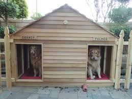 Backyard Ideas For Dogs dog run like the use of wood fencing instead of mesh this is still backyard dog areabackyard ideasoutdoor Dog House 3